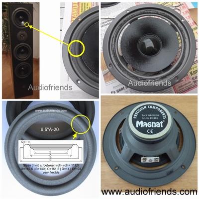 6 x Schaumstoff Sicke für Magnat Concept 1200 - W165CP870G