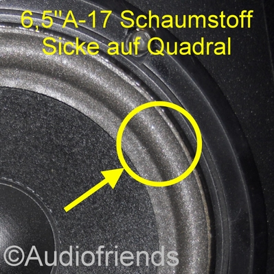 1 x Foam surround for repair various Quadral speakers
