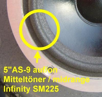 Infinity SM225, SM255 - 1 x Foamrand voor midrange