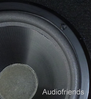 1 x Foam surround Infinity SSW-10 active subwoofer