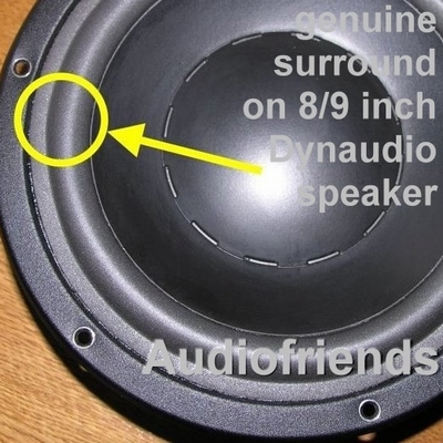 Dynaudio 24W75/100 - 1x Schaumst. ORIGINAL-Sicke > Reparatur