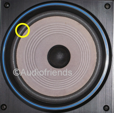 1 x Foam surround Matchline Pyramide woofer - 80502/W8