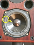 1 x Foam surround for repair Visonik David 7000 speaker