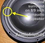 1 x Foam surround GENUINE for Translator Reflexion
