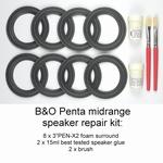 Bang & Olufsen Beovox/Beolab Penta - Reparatieset FOAM