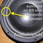 1 x GENUINE foam surround Dynaudio 24W100 etc. (Kurt M.)