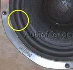 Dahlquist DQM-9 - woofer > 1 x 10 inch foam surround