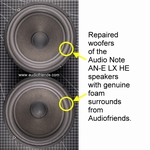 1 x Audio Note AN-E genuine foam surround (SEAS A21 FE/B)
